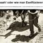 Reisebericht Wandern mit Esel